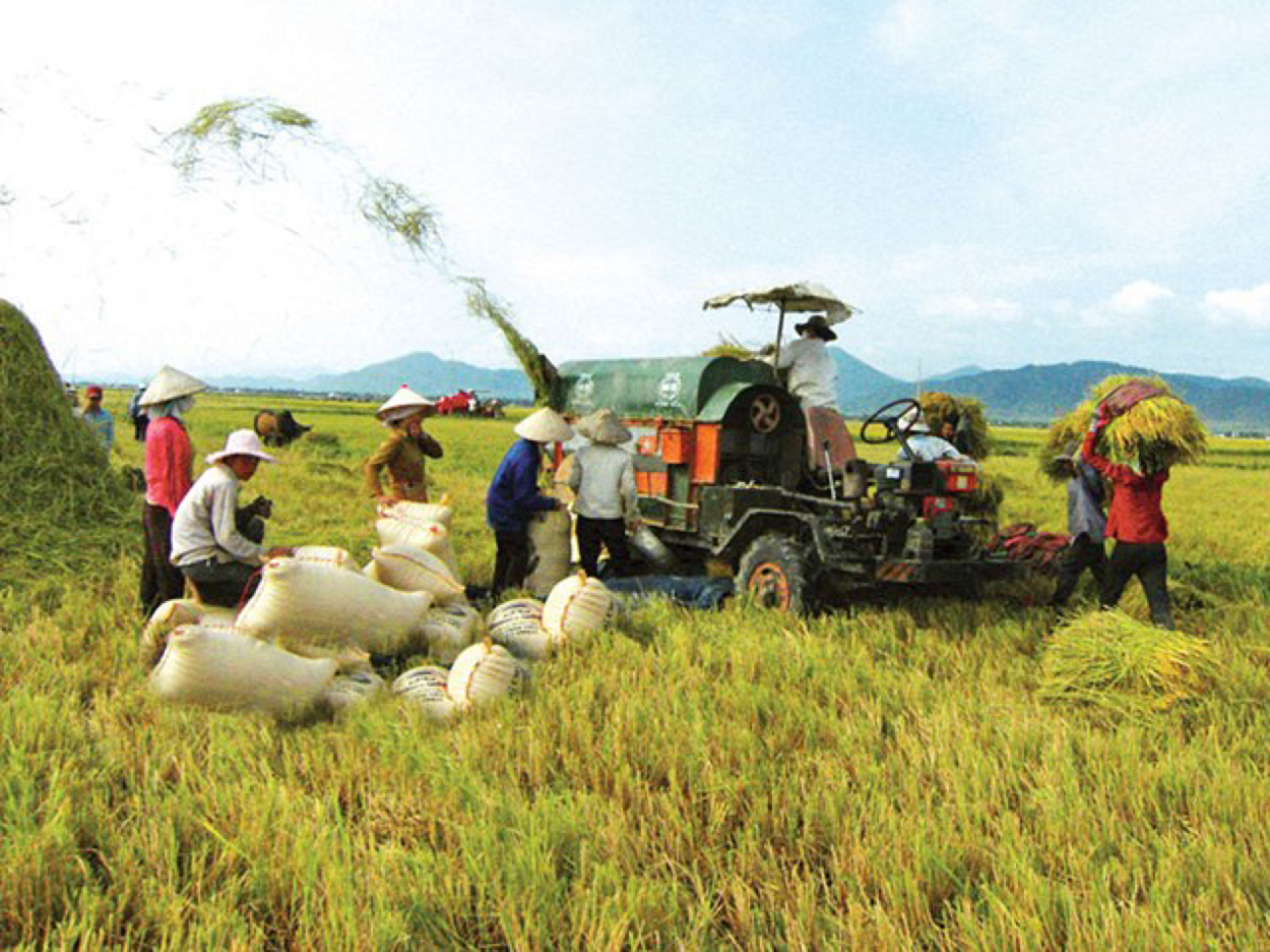 Agriculture sector acts to lure more investments
